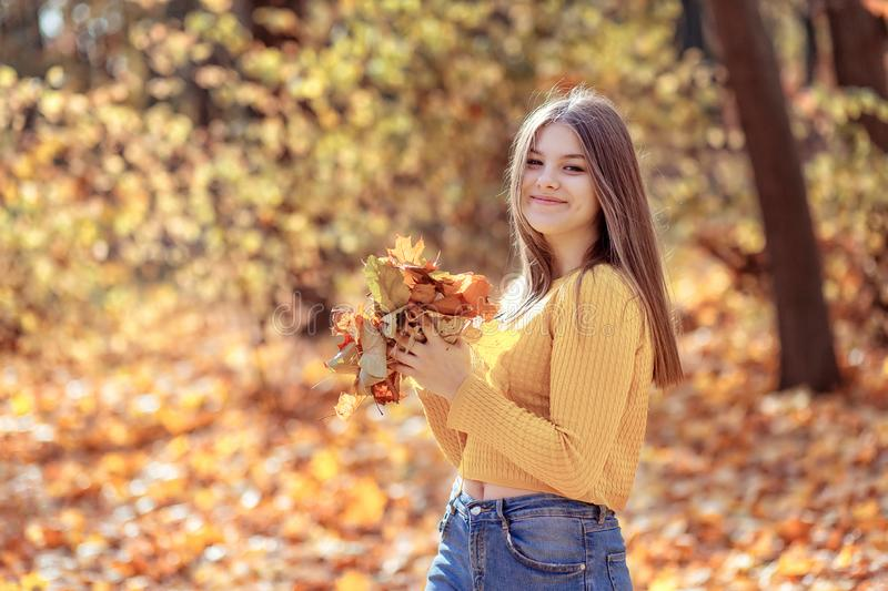 Girl in autumn park with golden foliage on a sunny fall day, holding yellow leaves in her hands royalty free stock photography