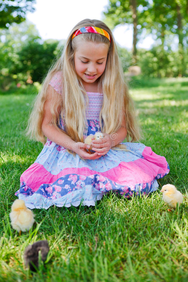 Girl with baby chicken in grass. Cute girl with baby chicken outdoor in grass stock images