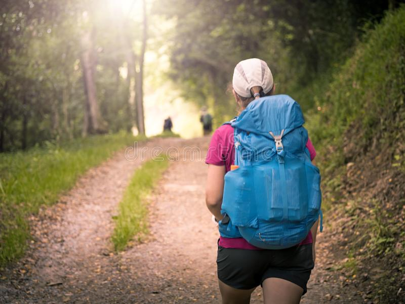 a girl with backpack travels along forest stock photography