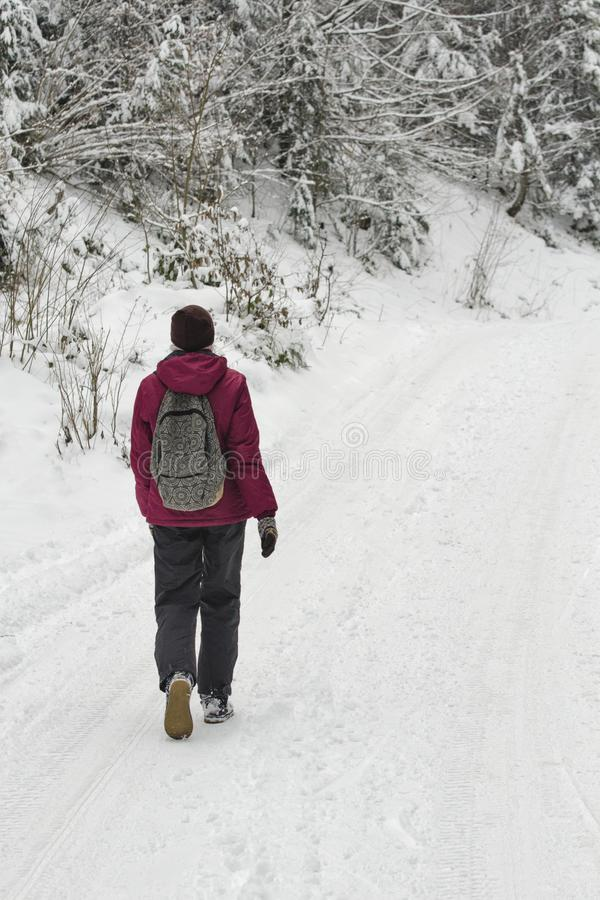Girl with a backpack walking along the road in a snowy forest. Winter day stock images