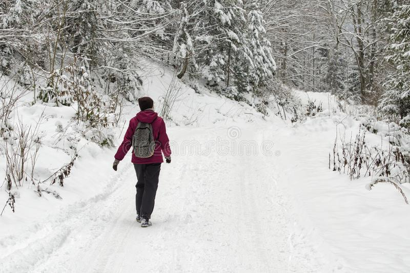 Girl with a backpack walking along the road in a snowy forest. Winter day stock photography