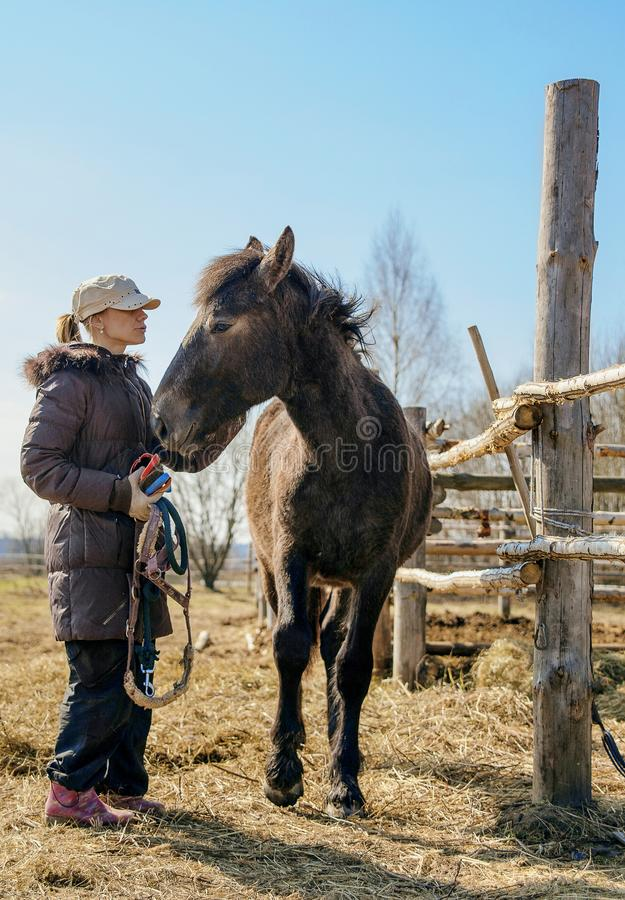 A girl in a baseball cap and down jacket is cleaning a colt royalty free stock photos