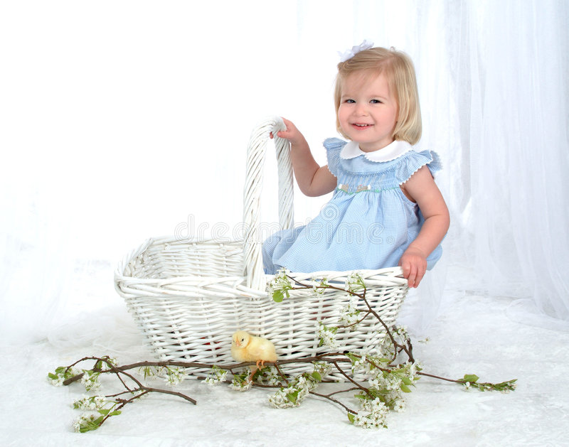 Girl in Basket with Chicken. Girl in blue sitting in basket looking at chicken in front of white background stock photos