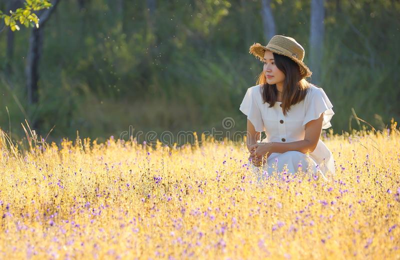 A girl in a beautiful grass flower field royalty free stock photos