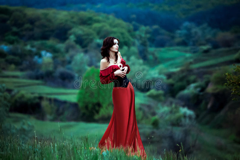 The girl in a beautiful vintage dress royalty free stock images