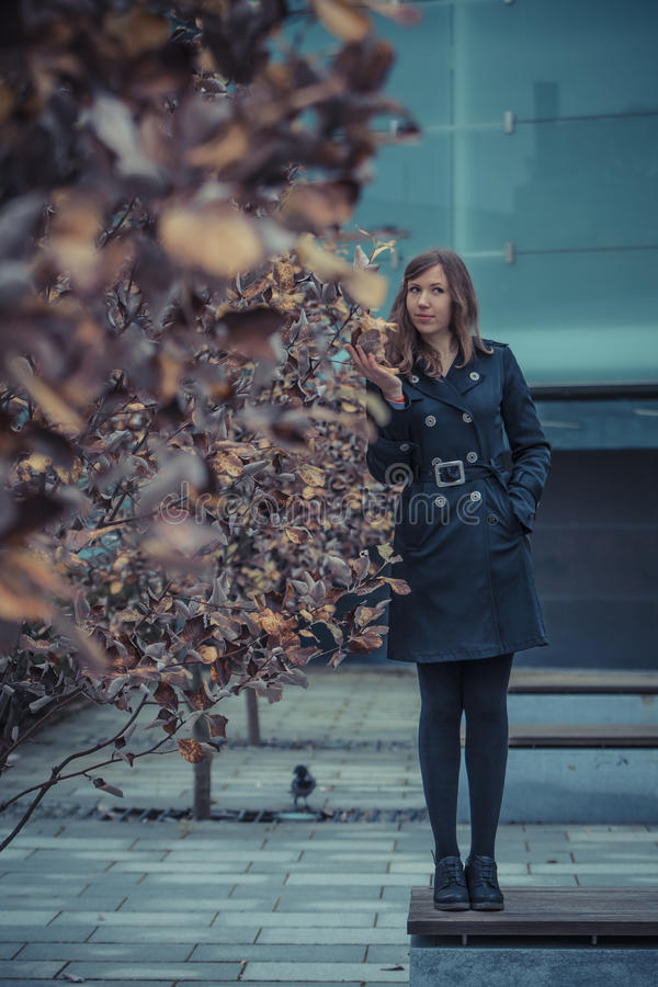 Download Girl on the bench stock image. Image of tree, leaves - 27385521