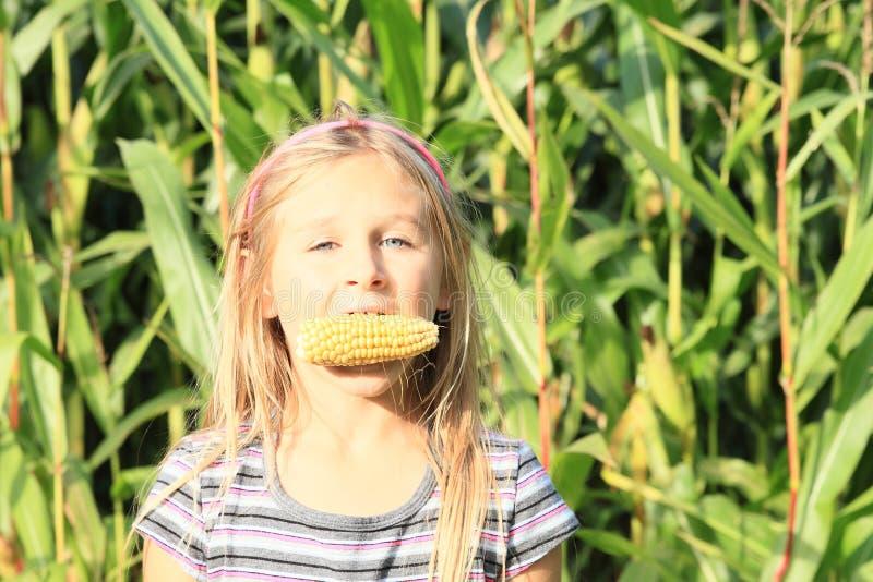 Girl biting corn royalty free stock images