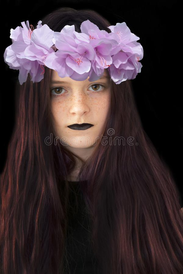 Rose Wreath Stock Photos Download 8 868 Royalty Free Photos