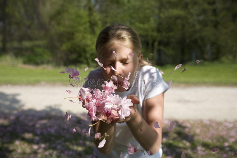 Download Girl Blowing In Cherry Blossom Stock Image - Image: 2303451