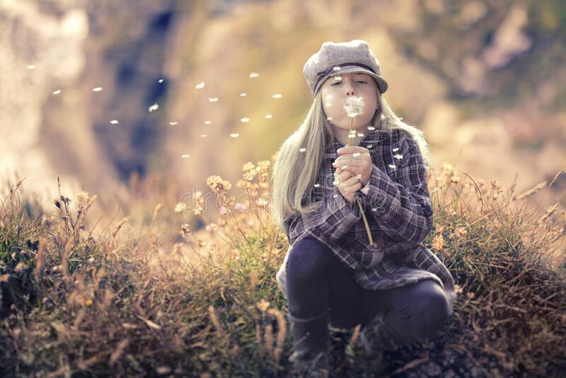 Girl blowing dandelions in field royalty free stock image
