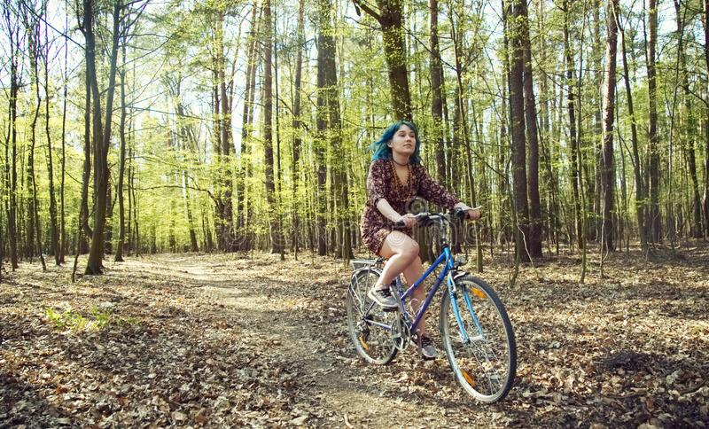 The girl in the dress rides a bicycle through the forest. stock images