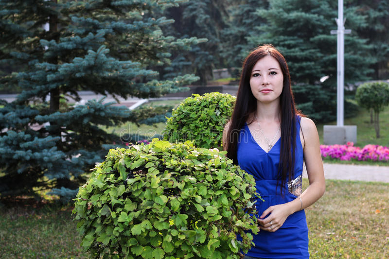 Girl in blue and ornamental shrub royalty free stock image