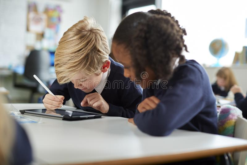 A girl and a boy using a tablet computer and stylus in a primary school class looking closely at the screen. Close up stock photography