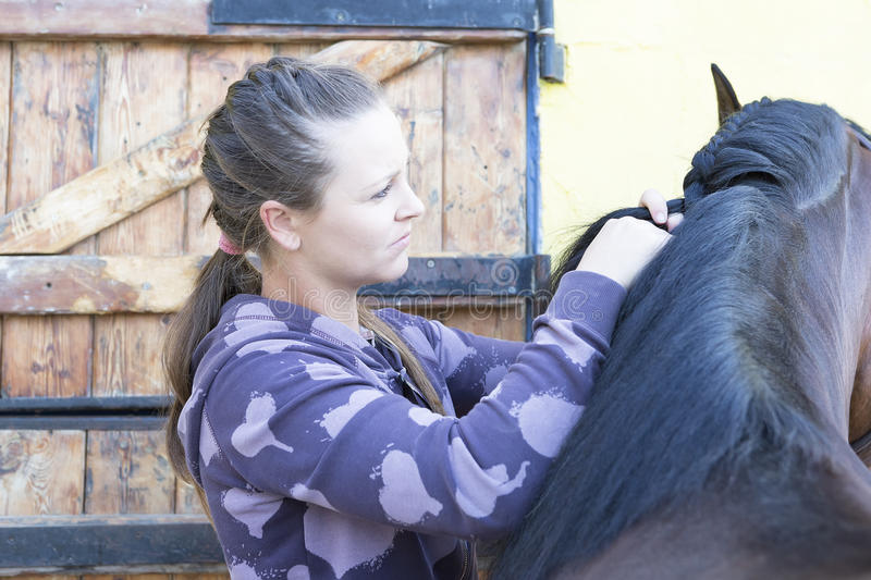 Girl braiding a horse mane. Young woman is braiding a mane of a purebred brown horse at the byre - focus on the eye stock image