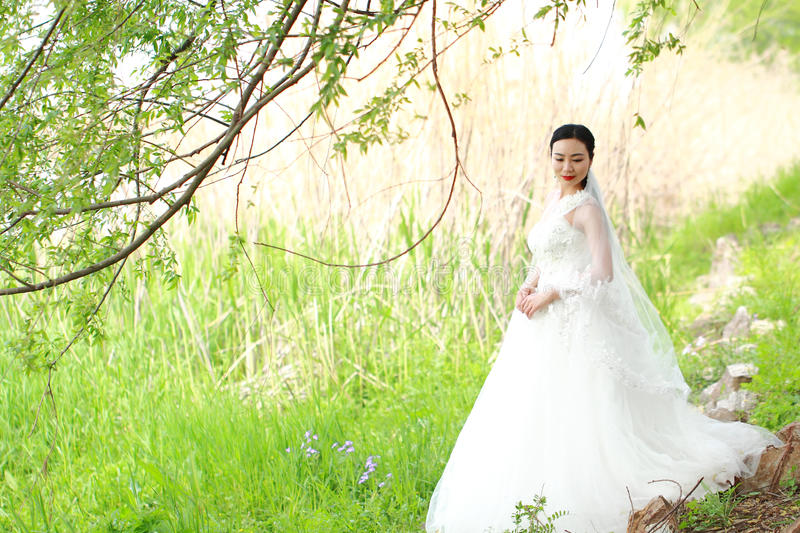 Girl bride in wedding dress with elegant hairstyle, with white wedding dress Standingin the grass by the river stock photo