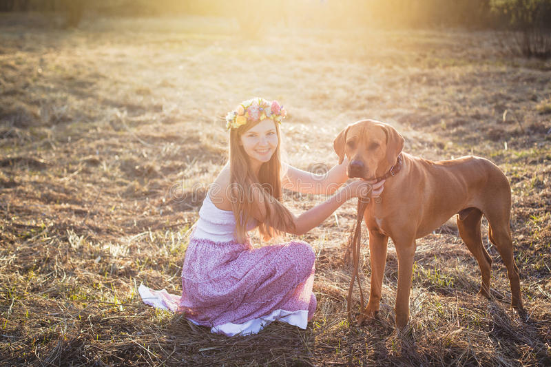 Girl and brown dog stock images
