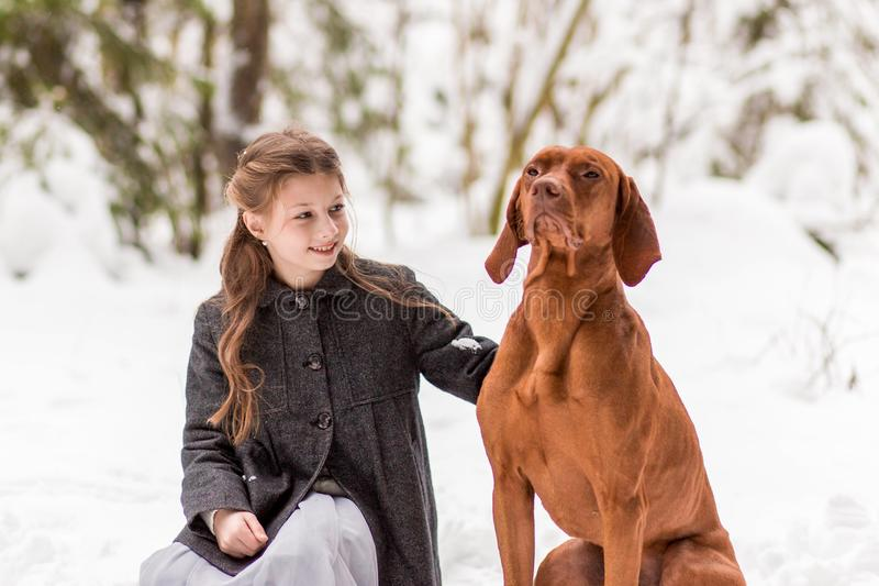 Girl and brown dog in nature in winter royalty free stock images