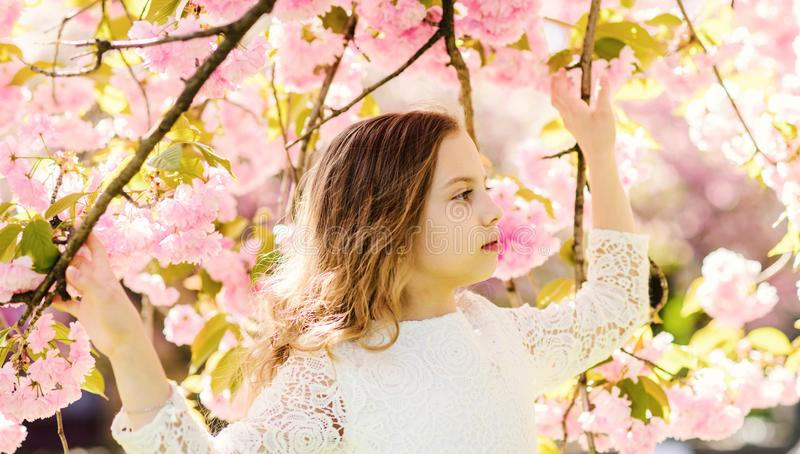Girl on calm face standing between sakura branches with flowers, defocused. Cute child enjoy nature on spring day. Spring flowers concept. Girl with long hair royalty free stock image
