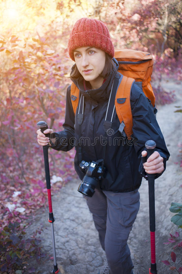 A girl with a camera and a backpack. The girl with the camera and the backpack goes on the trail in a beautiful forest stock photo