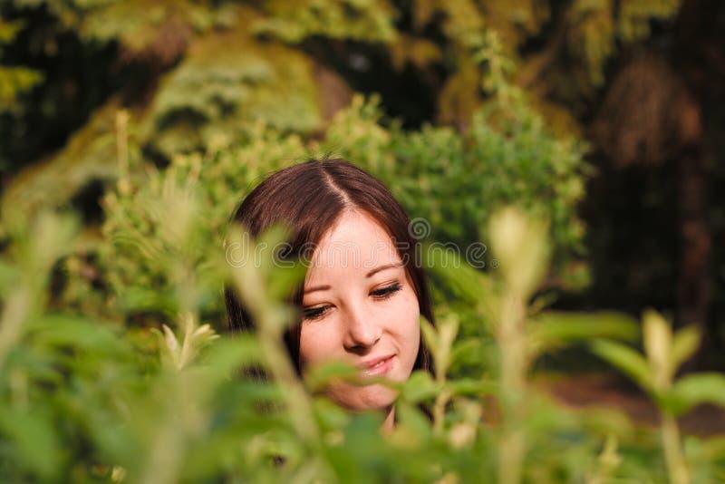 Girl& x27; cara de s através das folhas imagem de stock