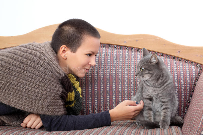 Girl and cat. Young woman and gray domestic cat at sofa stock images