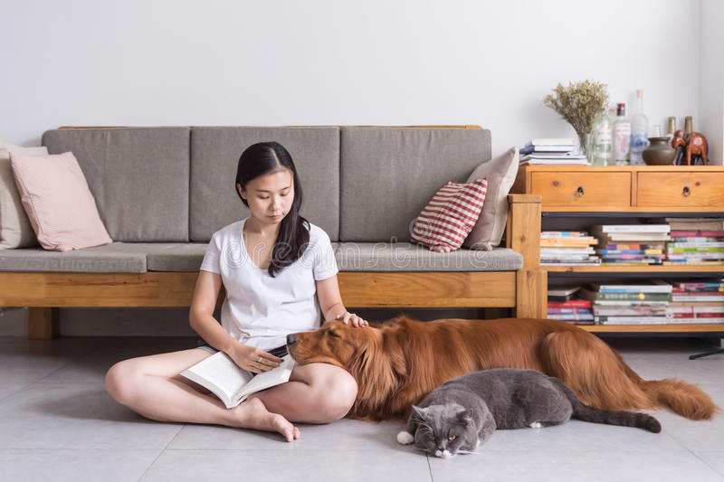 Girl and cat and dog. Indoor shooting stock photography