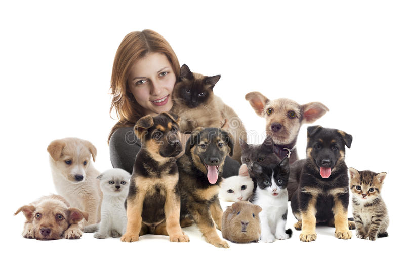 Girl with cat and dog. Veterinarian and cat and dog stock images