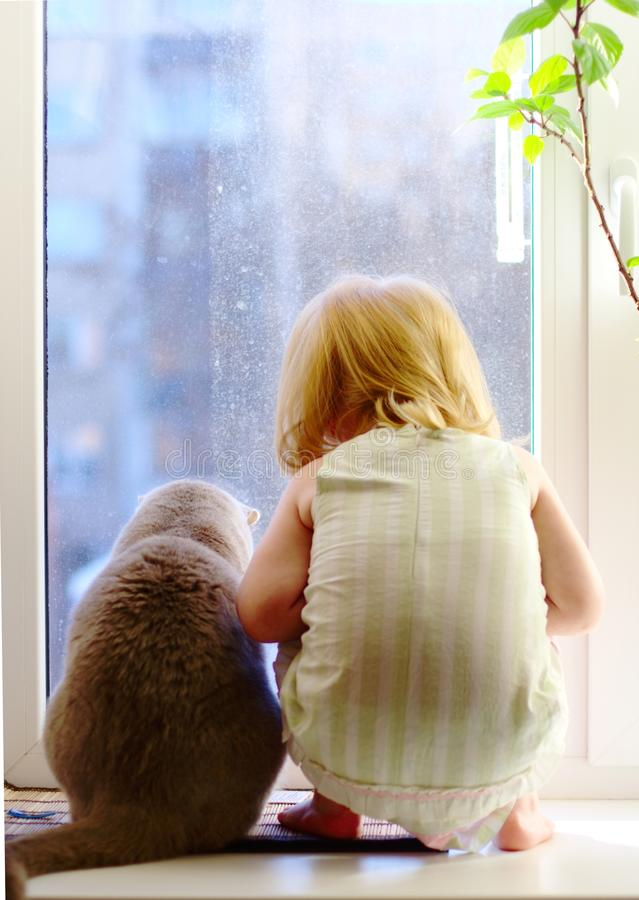 Girl and cat looking out of the window royalty free stock images