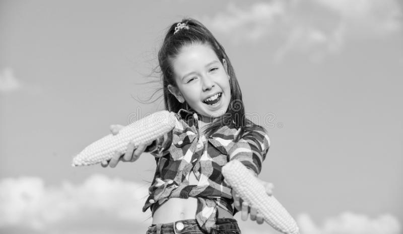 Girl cheerful hold ripe corns. Harvesting and fun. Kids love corn food. Corn vegetarian and healthy organic product stock image
