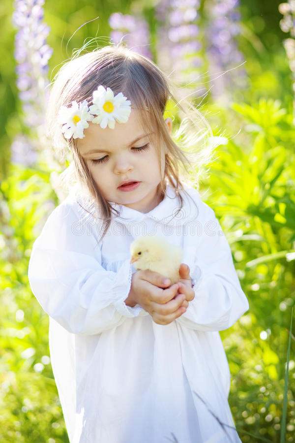 Girl with chicken. Cute girl with little chicken outdoors