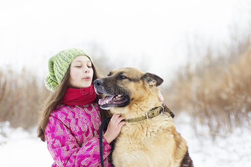 Girl child and dog stock photography