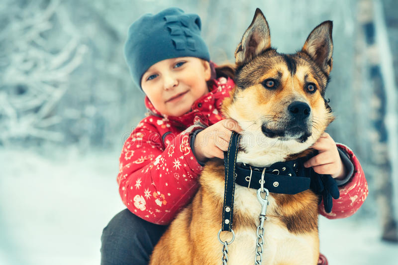 Girl Child and Dog hugging and playing Outdoor royalty free stock photo
