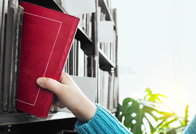 The Girl Chooses a Book from the Library stock photos