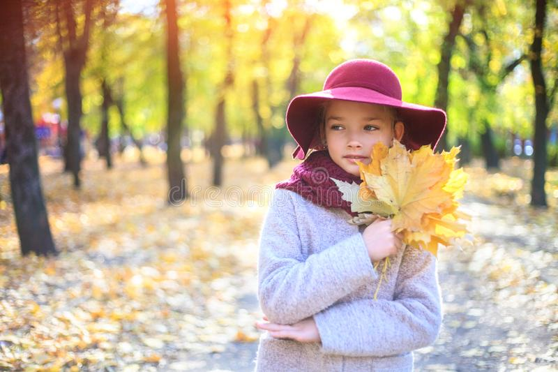 Girl in classic coat and hat in autumn park. Autumn season, fashion, childhood stock photo