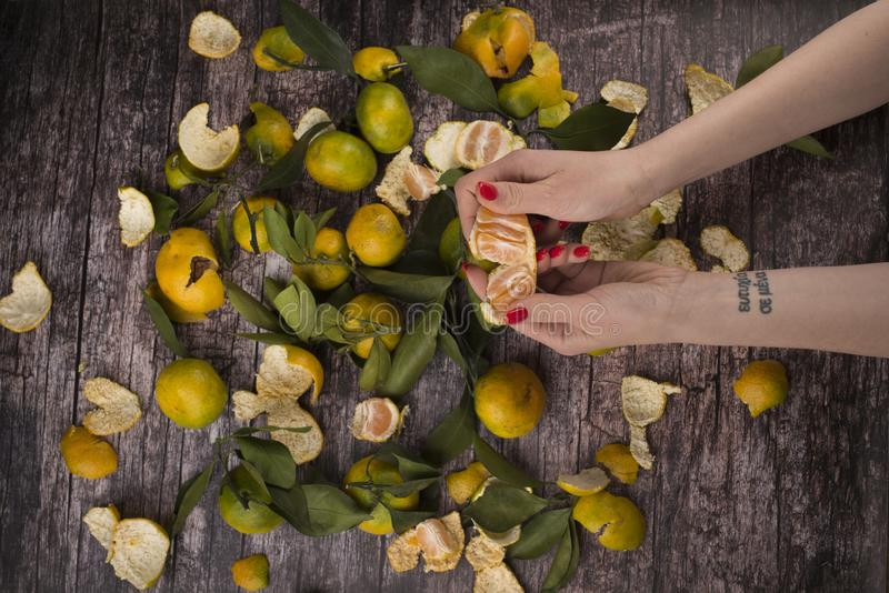 Girl cleans tangerines stock photos