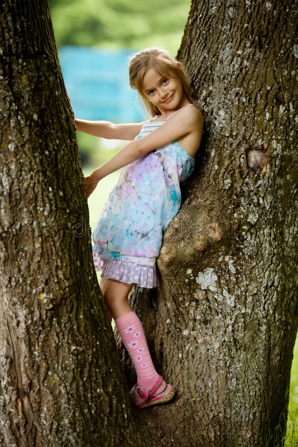 Girl climbs big tree in park stock photo