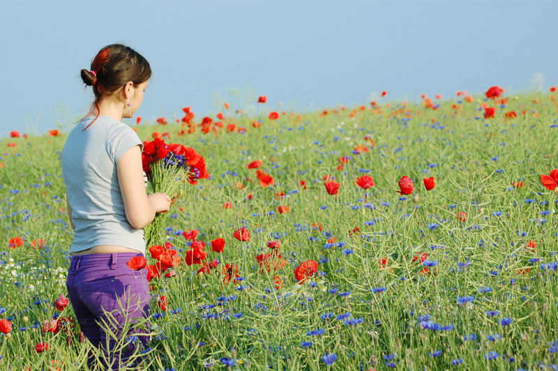 Girl collecting flowers stock photos