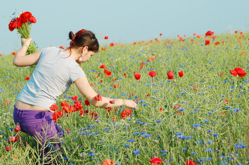 Girl collecting flowers royalty free stock photos