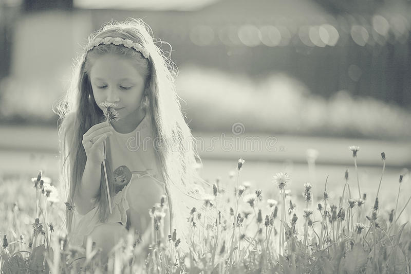 Girl collects flowers. In park stock image