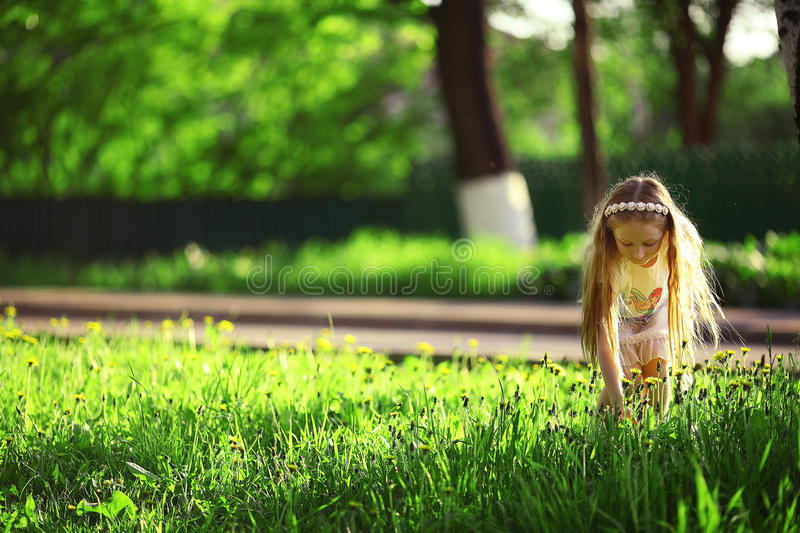 Girl collects flowers. In park royalty free stock photos