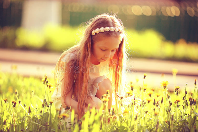Girl collects flowers. In sunny meadow royalty free stock photography