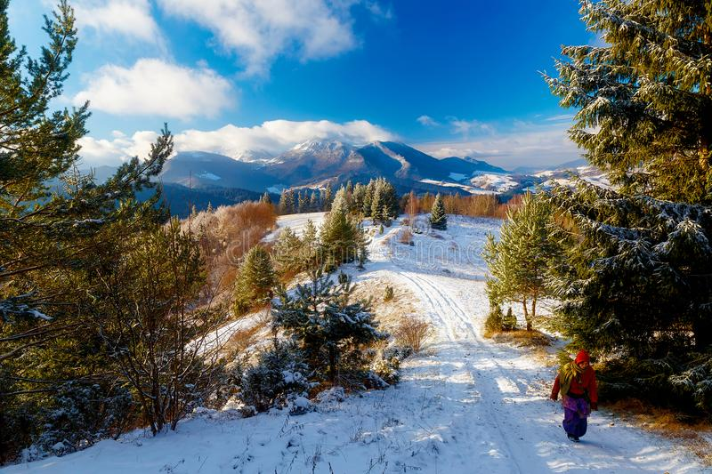 Girl in colorful ethno dress standing amids winter landscape. stock images
