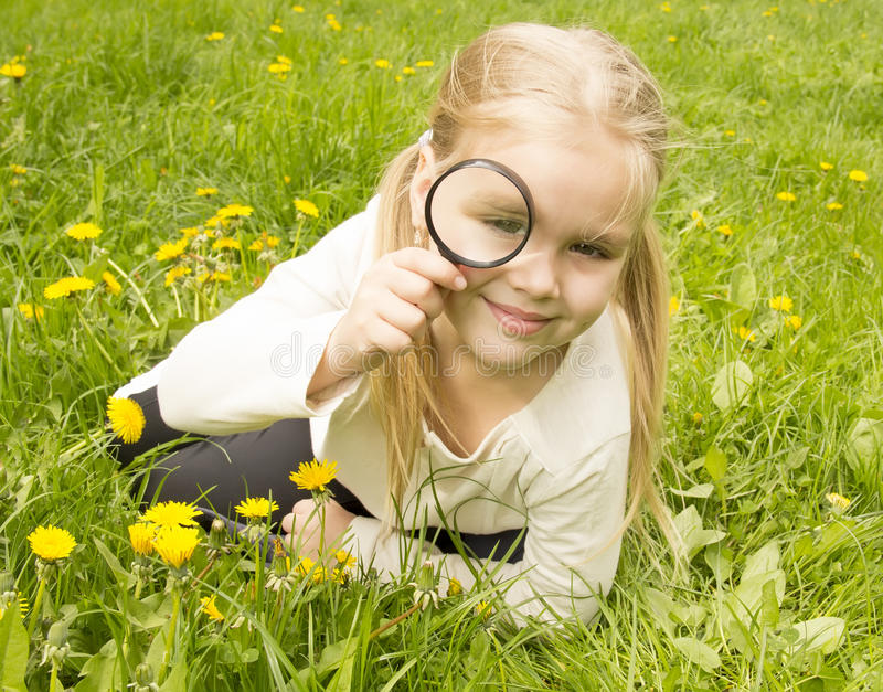 Girl considers dandelions flower through a magnifying glass royalty free stock images