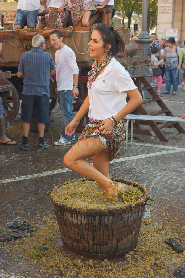 A girl crushes the grapes. Traditional preparation of the must for wine production: a girl crushes the grapes with their feet during the festival of typical