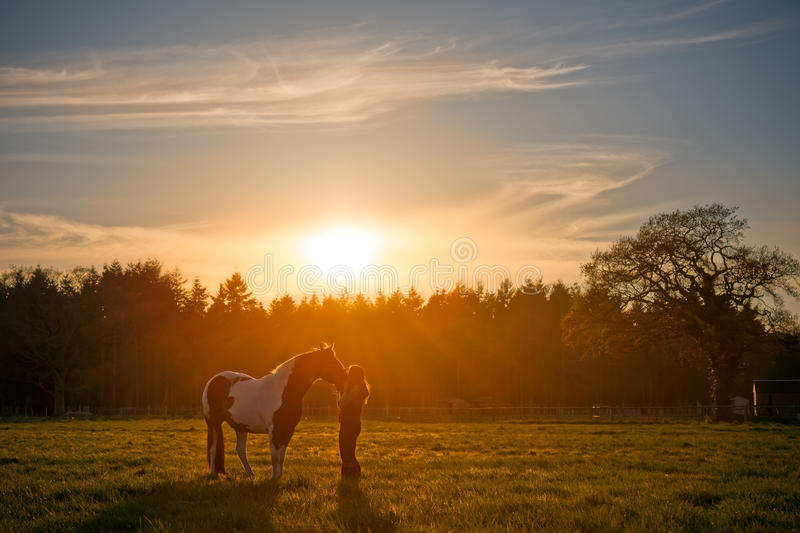 Girl Cuddling Horse at Sunset royalty free stock photography