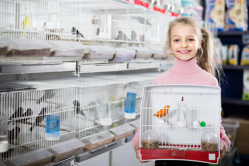 Girl customer purchased purchase of canary bird. Smiling girl customer purchased purchase of canary bird in pet store royalty free stock photos