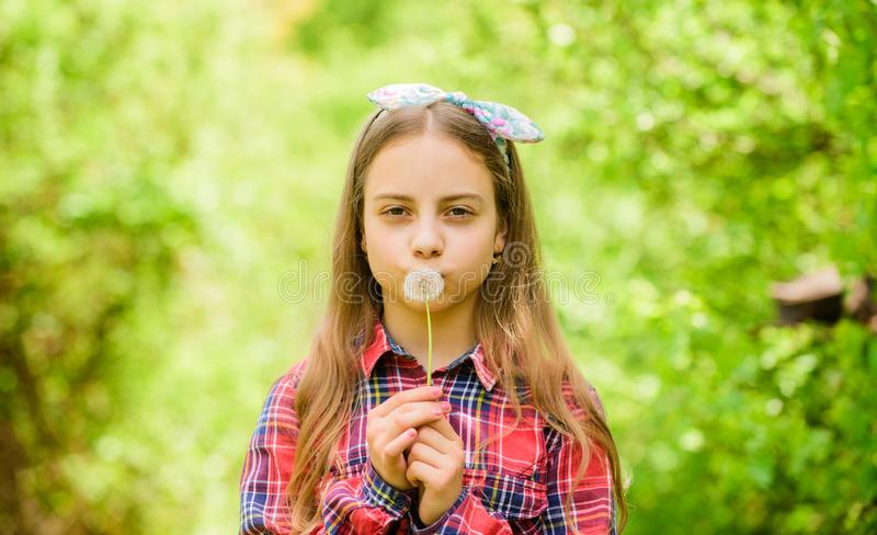 Girl cute teen dressed country rustic style checkered shirt nature background. Celebrating return of summer. Dandelion. Is beautiful and full of symbolism stock images