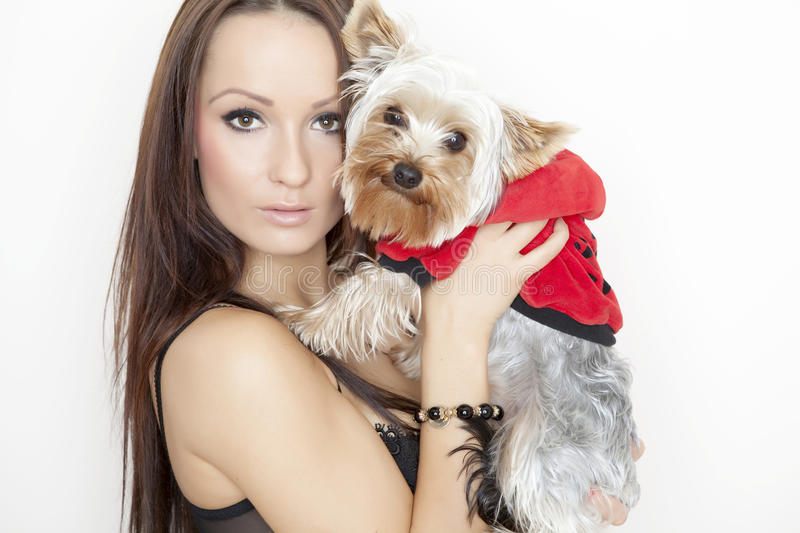 Girl with cute yorkshire terrier dog. Beautiful young brunette girl with cute yorkshire terrier dog, isolated on white stock photo