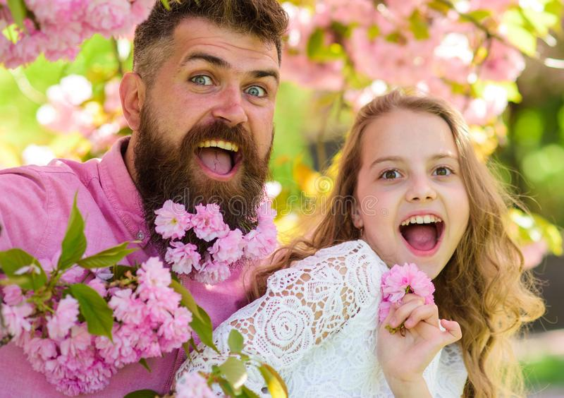 Girl with dad near sakura flowers on spring day. Father and daughter on happy faces play with flowers and hugs, sakura royalty free stock photography