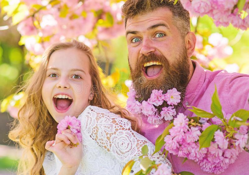 Girl with dad near sakura flowers on spring day. Father and daughter on happy faces play with flowers and hugs, sakura. Background. Child and men with tender royalty free stock photography